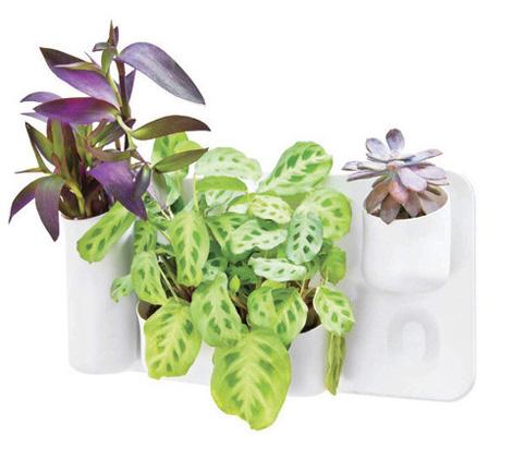 Urbio Planter